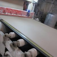 Linyi Weijiya waterproof fire resistant wallboard