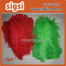 Venta al por mayor rojo y verde de plumas de avestruz