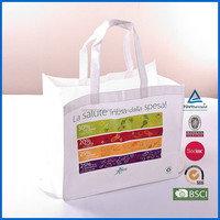 Wenzhou Promotional Recycle Non-Woven Bag/PP Non Woven Shopping Bag/Non Woven Bag