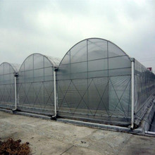 High quality plastic greenhouse film with different specification