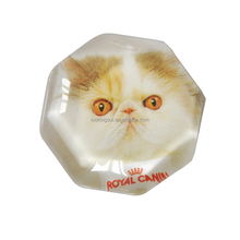 handmade refrigerator magnet in crystal with cute kitten design