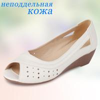 latest 2013 fashion exotic all kinds of women shoes