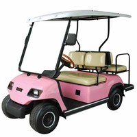 Pink 4 person electric beach buggy for sale LT-A2+2