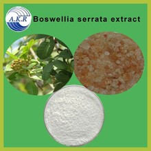 High Quality Boswelia Serrata Extract with 65% Mastic Acid by HPLC