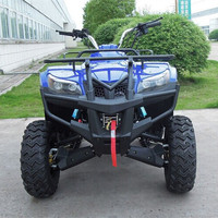 atv 250cc personal tracked vehicle,atv amphibious vehicles for sale