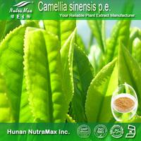 camellia sinensis p.e ,camellia sinensis leaf extract,Camellia sinensis (L.) Kuntze.-- NutraMax Supllier