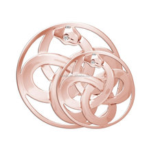 2015 New Fashion Snake Rose Gold Coin for Locket Charm Pendant with Crystal Jewelry