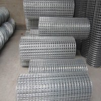 High Quality Electro Galvanized 8 10 Gauge Welded Wire Mesh
