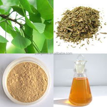 Ginkgo Biloba Extract/Top Quality From 10 Years experience manufacture Ginkgo Biloba Leaf