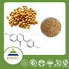 cGMP Manufacturer Supply Top Grade Natural Soybean Plant Extract Soy Isoflavone Powder KS-14