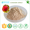 Hot selling plant extract herbal extract schisandra extract lignans