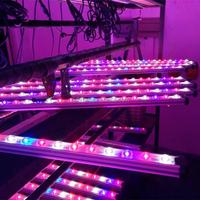 New greenhouse led lighting growbar led grow bar 35W 45W 55W DC 12v led grow lights for plants flower hydroponics system