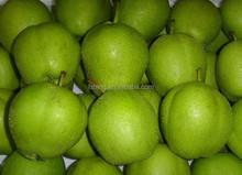 2014 new crop fresh su pear with good quality