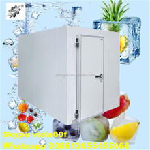 Fruit And Vegetabled Fresh Condensing Unit And Air Cooler Cold Room
