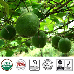 Pure natural sweetness 50% Mogrosides V Monk Fruit Extract ( Luo Han Guo )