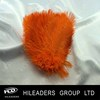 Wholesale Dyed Ostrich Feather AH13