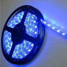 Christmas Decoration CE&RoHS DC12V/24V waterproof LED strips light SMD 3528 blue smart lighting