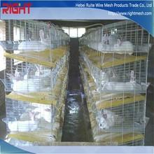 Comercial de la carne de lujo del conejo jaula