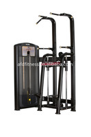 2015 Chinese Good quality commercial gym machine--Assisted CHIN/DIP