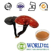 Chinese lucid ganoderma extract powder /Reishi Mushroom Extract/Ganoderma Extrat