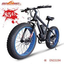 powerful 350w hub motor adult electric bike 36v 8.8ah lithium battery e bike