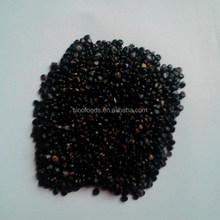 black color semen pharbitidis medicinal value of plants