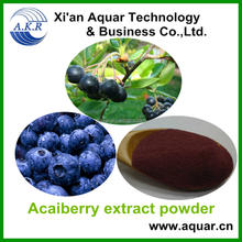 ISO,Halal,kosher Certified Natural Acai Berry extract,Acai berry extract powder