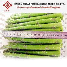 Organic Canned Green Asparagus In Tin