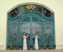 best sale Luxury Custom-made bronze villa main door