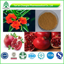 GMP factory supply lower price natural Pomegranate Peel Extract powder