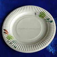 party paper plate/ white dinner plates/ birthday paper plates