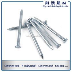 1-5 inches concrete nail/steel nails