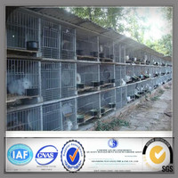industrial galvanized steel rabbit cages for sale
