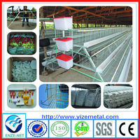 YIZE above 95% egg production egg farm for chicken cage