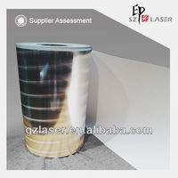 Hologram laminated paper board for food packaging in roll