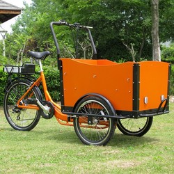 Europe 3 Wheel Electric Cargo Bike / Trike for sale cargo & family tricycle CE