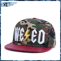 2015 New produce wiht 3D Embroider wholesale New Fashion snapback hats