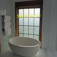 pldc smart glass shower