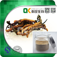 Factory Supply 100% Natural Cordyceps Extract Herbal Extract