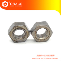 Widely Used High Quality Hex Nuts for Resistance Projection Welding