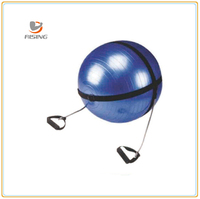 Gym Ball Carry Strap with Elastic Handles, Carry Strap with handles, Body ball strap with expander