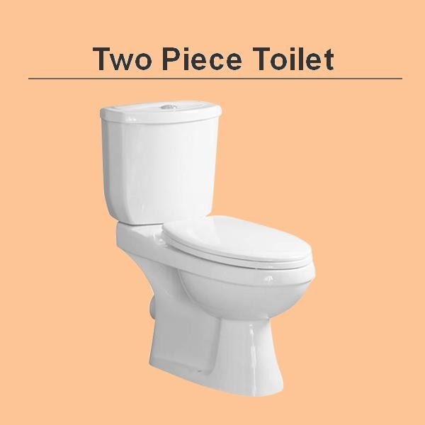 two piece toilet.JPG