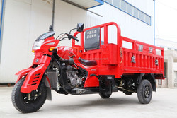 TJ200ZH China cargo motorcycle with three wheel