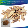 High Quality Free Sample Dahurian Angelica Root extract