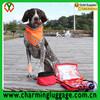 Large Travel Pet First Aid Kit Animal Emergency Bag