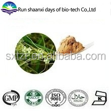 Natural Herb Extract Chinese Dodder Seed Extract / Semen Cuscutae Extract Powder
