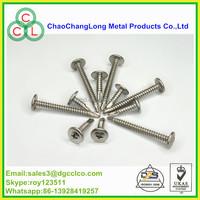 modify truss Head (wafer) phillip drive BSD thread drilling screw