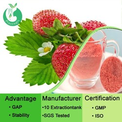 Organic strawberry fruit powder/fresh strawberry/strawberry