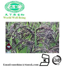 Natural Pigment Food Color Black Rice Extract Anthocyanin / Gardenia Powder Anthocyanin
