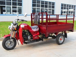 adult cheap cargo 200cc Tricycle